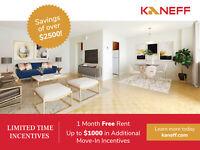 Large 1 Bedroom Apartment Mississauga / Peel Region Toronto (GTA) Preview