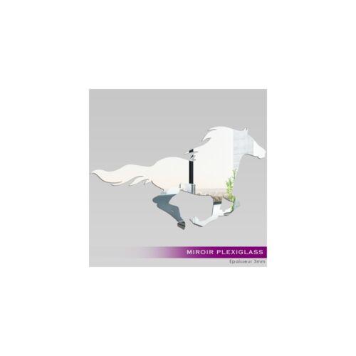 Miroir Plexiglass Acrylique - Cheval Ref: MIR-165