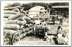 VAN-BUREN-AR-CORN-on-FARM-EXAGGERATED-VINTAGE-REAL-PHOTO-POSTCARD-RPPC