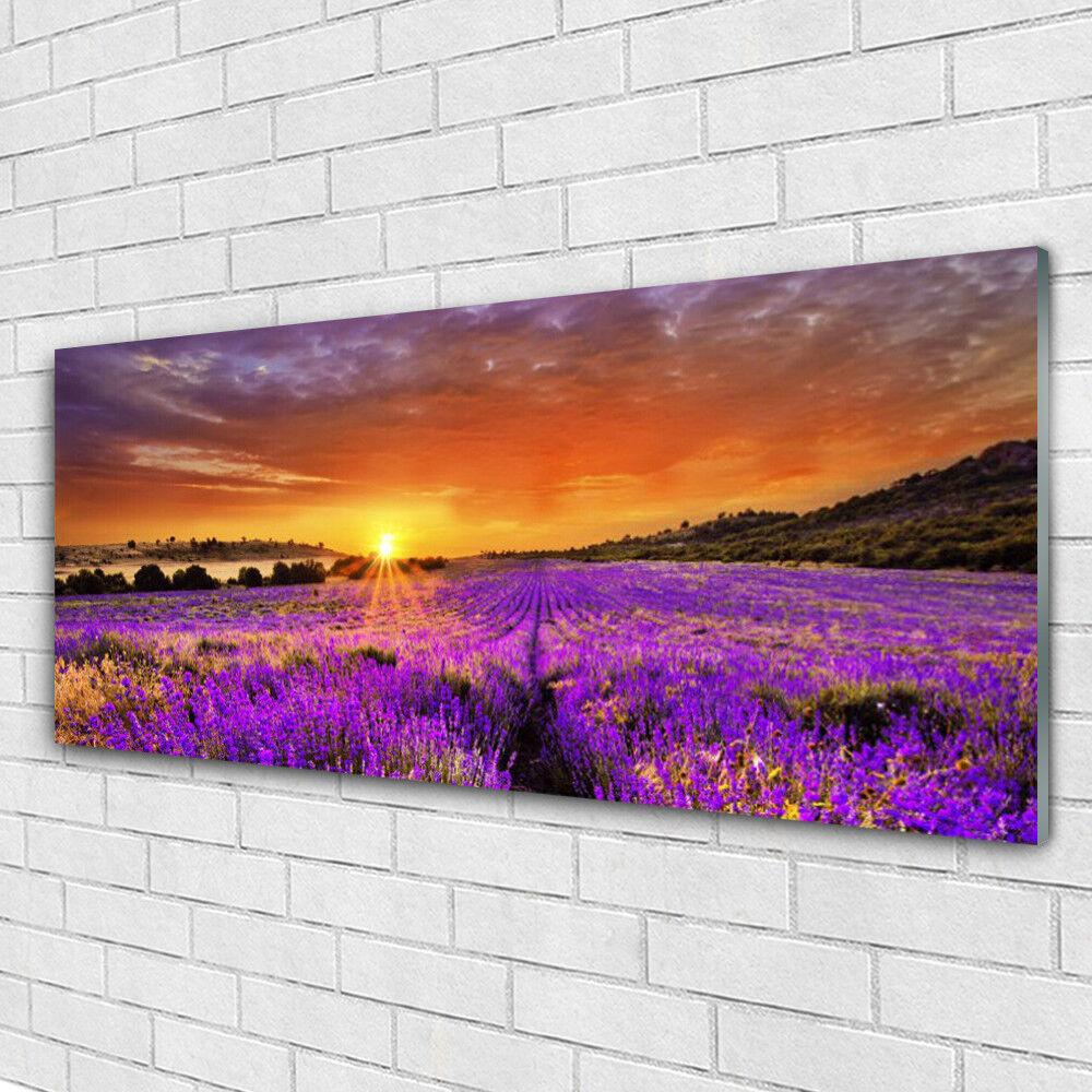Tableau murale Impression sous verre 125x50 Nature Fleurs Prairie