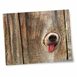 """8x10"""" Prints(No frames) - Dog in the Fence  #14153"""