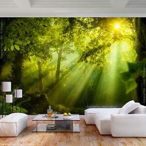 Details zu VLIES FOTOTAPETE Wald Landschaft Sonne grün Wohnzimmer TAPETE  WANDBILDER XXL 101