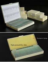 10-200pcs Glass Prepared Microscope Slides in Box for Education Gift Collection