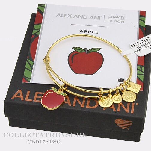 ad8484a681a69 Alex and Ani Charity by Design Apple EWB Bangle Bracelet CBD17APSG