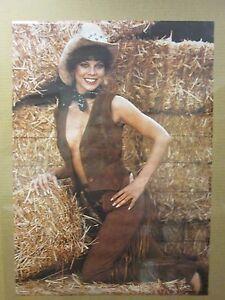 Image Is Loading Vintage Girl Erin Moran 1981 Man Cave