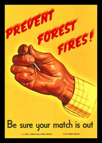 *PREVENT FOREST FIRES* U.S FOREST SERVICE ALL WEATHER METAL SIGN 8X12