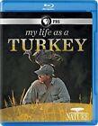 Nature My Life as a Turkey 0841887015738 Blu-ray Region 1