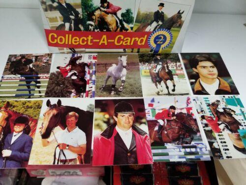 Equestrian 2nd Edition Trading Card Box