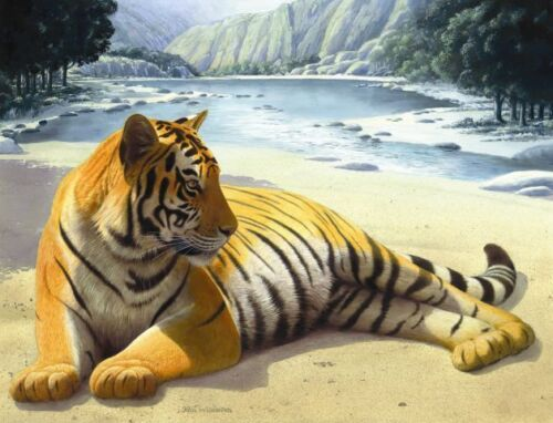 Matted River Tiger Foil Art Print~8x10 Affordable Amimal Art