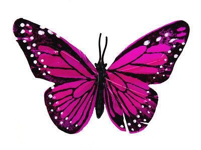 Dekoklammern Schmetterling Magenet aus echt Federn Dekoclips 6 Farbe zur Auswahl