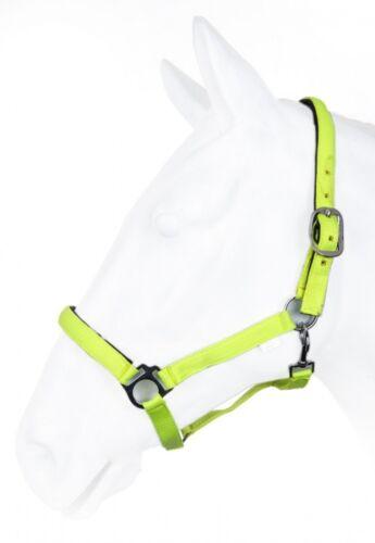 Nylonhalfter unterlegt BASICLINE HKM by Reiterladen24 neon grün