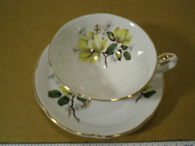 Royal Grafton English Fine Bone China Tea Cup and Saucer Set with Gold Trim