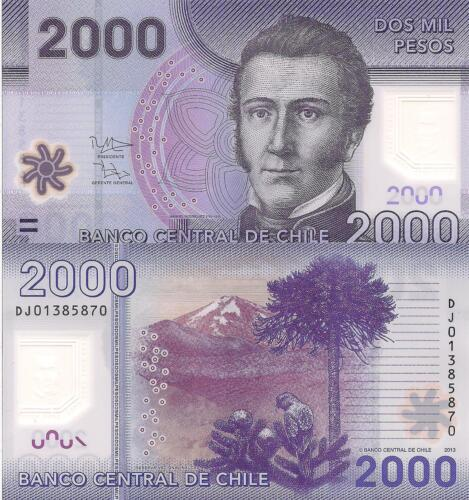 CHILE 2000 Pesos Banknote World Polymer Money UNC Currency Pick p162c 2013 Bill