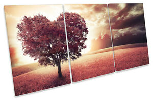 Love Heart Tree Autumn Sunset TREBLE CANVAS WALL ART Picture Print
