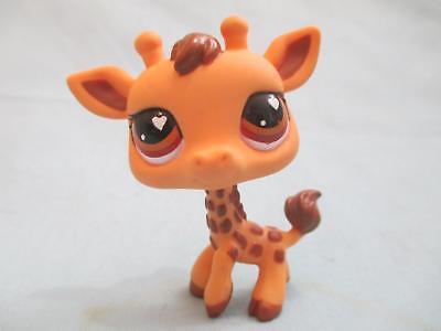 Littlest Pet Shop Lot of 3 Random Different Giraffe Animal Figures Authentic Lps