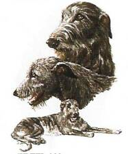 CHESAPEAKE BAY RETRIEVER Multi-Dogs on 12 Identical Fabric 6 inch squareToQuilt