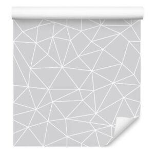 363303 Vliestapete Hexagon Muster Grafisch 13