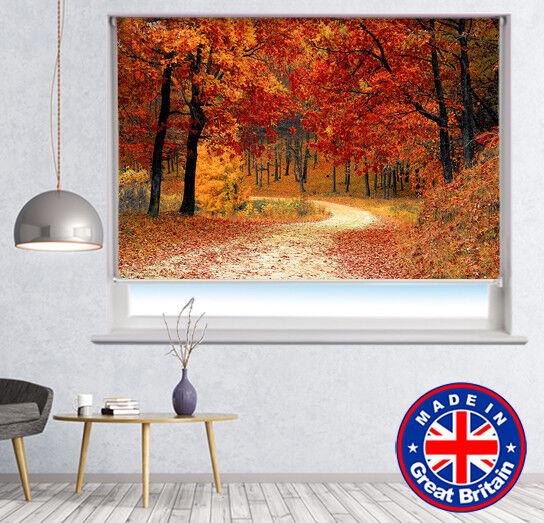 AUTUMN Foresta Alberi Paesaggio stampato Foto FINESTRA A RULLO di qualsiasi dimensione personalizzata
