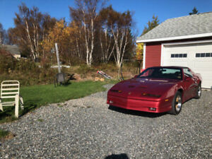1989 Pontiac Firebird GTA