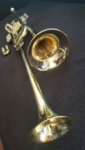 Berkeley-4th-Rotary-Valves-F-trumpet-Bb-Double-Bell-Piccolo-Trumpet
