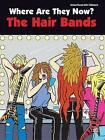 Where Are They Now? the Hair Bands by Hal Leonard Publishing Corporation (Paperback / softback, 2010)