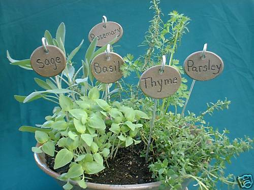 set of 5 YOUR C Herb /& Vegetable Plant Garden Markers on Stakes Tags gardening