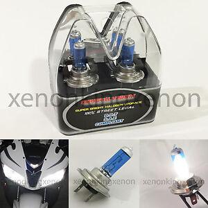 m box h7 white 100 watt 5000k halogen headlight lamp 2x. Black Bedroom Furniture Sets. Home Design Ideas