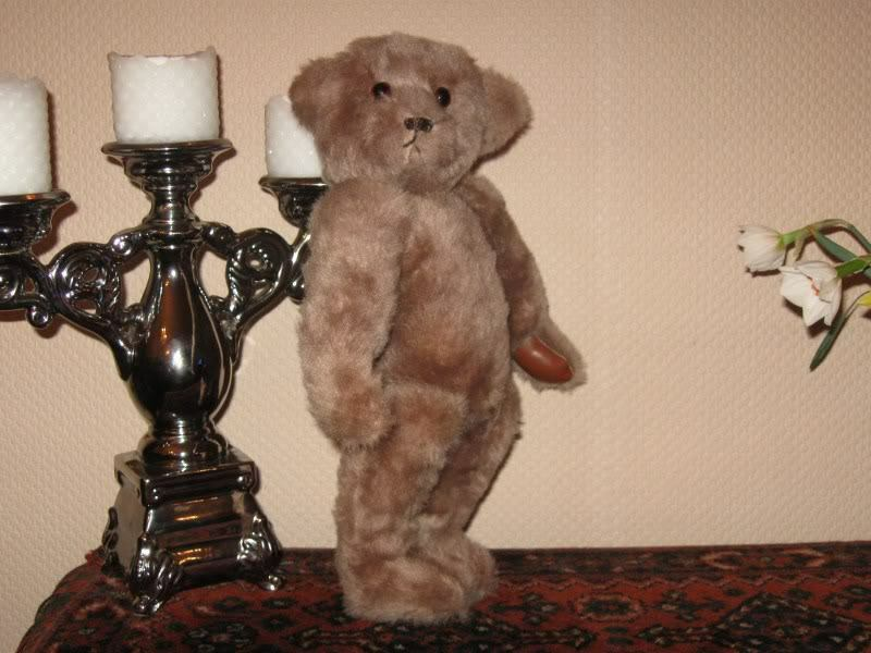 Vintage Germany OOAK Mohair Bear Leather Paws Glass Eyes 15 inch