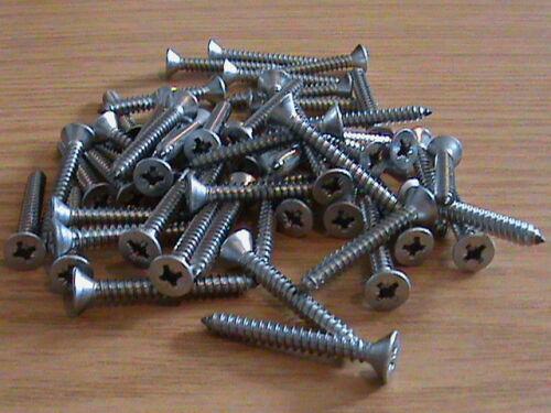 4.8 x 38 mm MANOSCRITTO terminato in novembre x 1 1//2 A4 in acciaio inox Pozi CSK svasati Self TAP SCREW