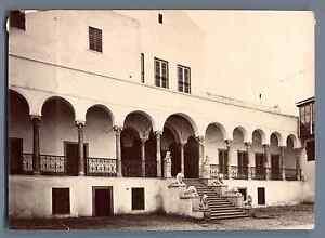 Tunisie-Tunis-Palais-du-Bardo-Cour-et-Escalier-des-Lions-Vintage-albu