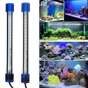 20 50 wei blau multi wasserfest aquarium tauchpumpe led clip lichter ebay. Black Bedroom Furniture Sets. Home Design Ideas