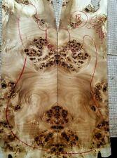 Mappa black poplar burl 15x27x 9/32 guitar bass craft exotic figured wood b