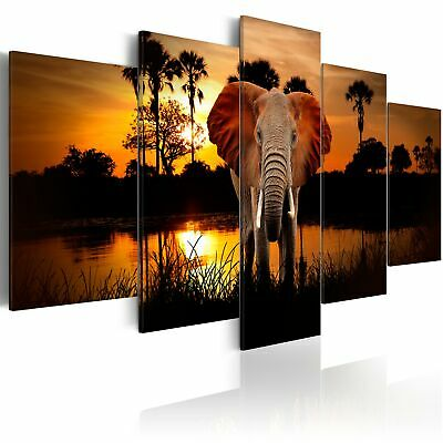 Canvas Print Deer Framed Wall Art Picture Photo Image 020112-2