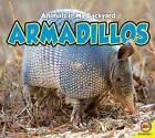 Armadillos by Aaron Carr (Hardback, 2015)