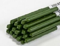 (25) Panacea 84185 2 Ft / 24 Green Coated Metal Plant Sturdy Stakes