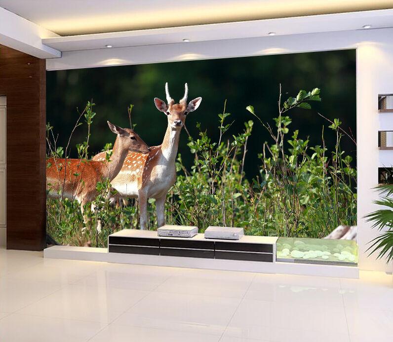 3D Wild Pretty Deer 27 WallPaper Murals Wall Print Decal Wall Deco AJ WALLPAPER