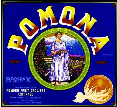 Pomona Suburban Scenic Orange Citrus Fruit Crate Label Art Print