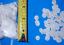 "thumbnail 2 -  25+ REAL DRIED TINY SAND DOLLARS SEA SHELLS CRAFTS DECOR 1/8"" TO 1/2"""