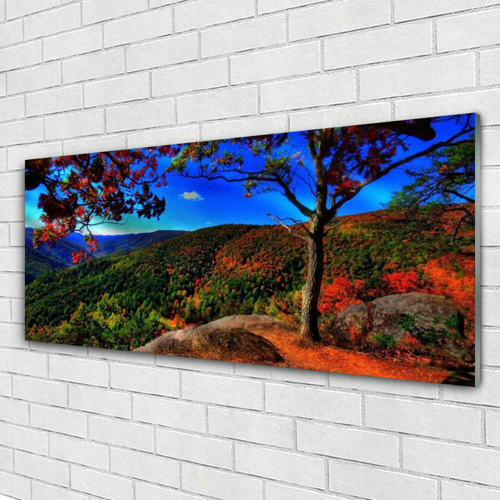 Glass print Wall art 125x50 Image Picture Mountain Mountain Mountain Forest Nature bfb2fe