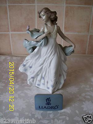 Beautiful Retired Lladro Summer Serenade Figurine Model No 6193 Made In Spain