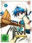 Magi - The Kingdom of Magic (2015)