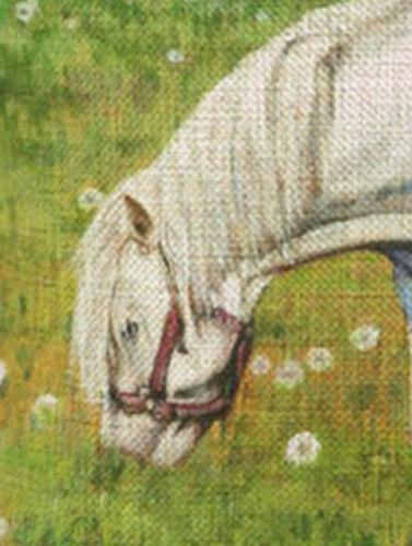 Canvas-Stoff Schimmel auf der Koppel Kissenhülle Kissenbezug Motivkissen