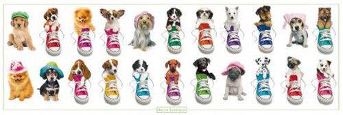 Keith Kimberlin - Hunde, Turnschuhe, Welpen Tür-Poster