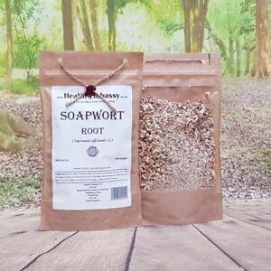 Soapwort Root-Stock ( Saponaria officinalis - rhizoma ) 100g - Health Embassy
