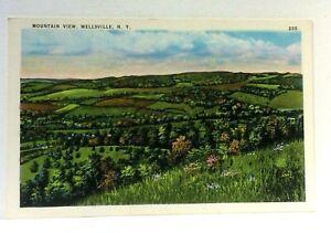 Wellsville-New-York-Mountain-View-Vintage-Postcard