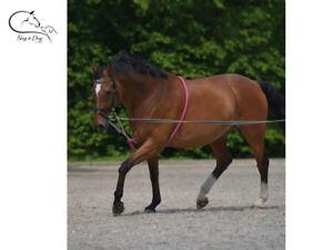 Waldhausen-longes-aide-en-coton-doux-Corde-Training-Aid-cheval-poney-livraison-gratuite