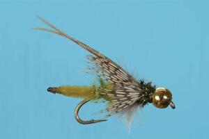 Bead-Head-Extended-Body-Olive-Caddis-Pupa-Nymph-Size-14-or-16-Solitude-Fly-Co