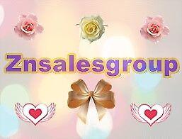 znsalesgroup