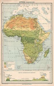 Congo Basin On Map Of Africa.1931 Map Africa Vegetation Congo Basin Mountains Sahara Desert
