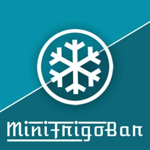 BARETTO Minifrigo 45 litri FrigoBar Frigorifero 50 Watt Frigo Bianco Classe A